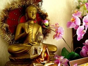 B ouddha et hibiscus