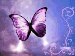 Papillon violet