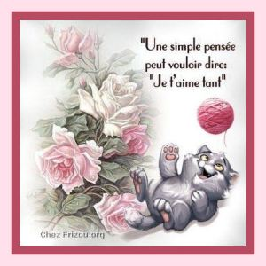 une-simple-pensee,je t'aime tant