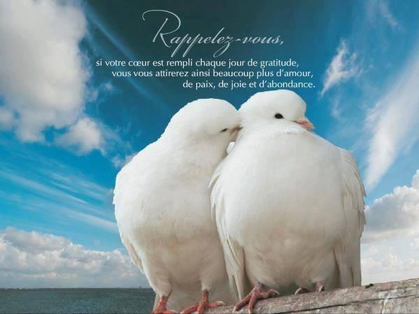 gratitude-et-2-oiseaux