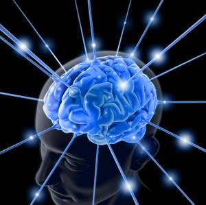 2-hemisphere